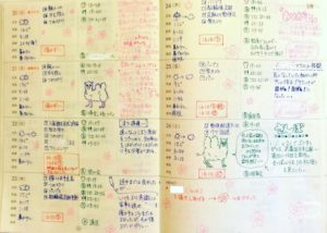 Monthly Diary in Japanese