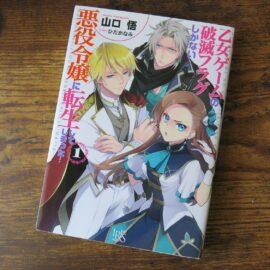Light Novel Comedy「はめふら」(Bakarina)