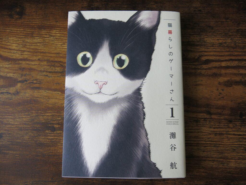JLPT N3 Manga Neko gurashi Gamer-san